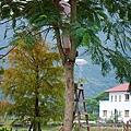 991112樹木修剪 036.jpg