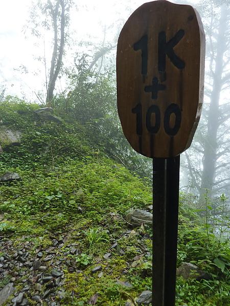 太平山 243.jpg