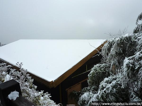 太平山~銀白世界 119.jpg