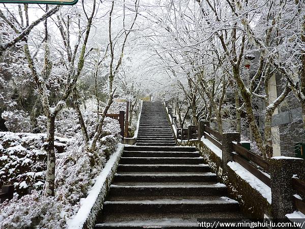 太平山~銀白世界 114.jpg