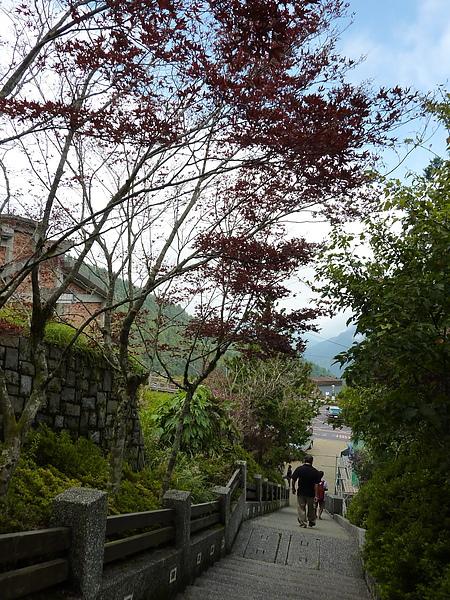 太平山 342.jpg