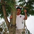991112樹木修剪 050.jpg