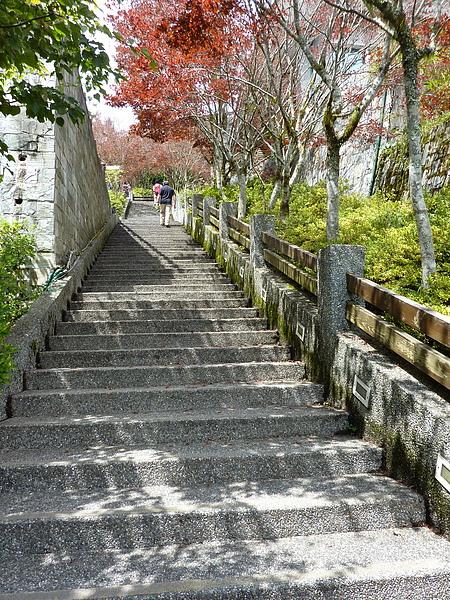 太平山 272.jpg
