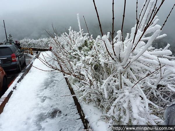 太平山~銀白世界 093.jpg