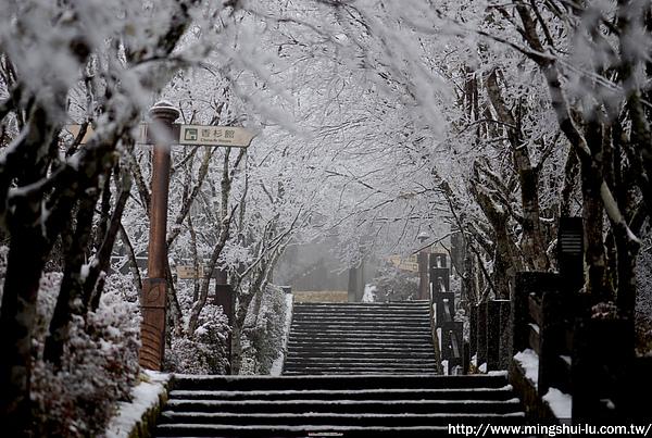 太平山~銀白世界 521.jpg