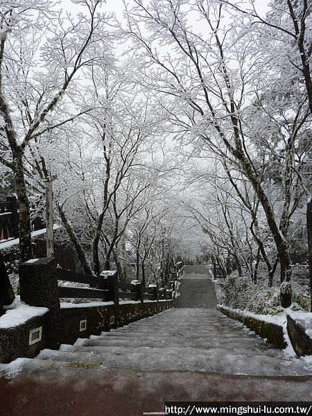 太平山~銀白世界 144.jpg