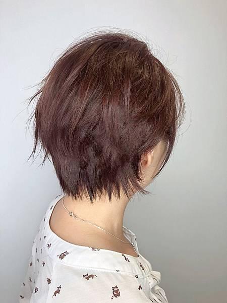 蓬鬆短髮.jpg