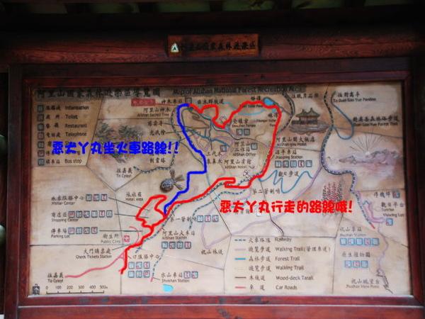 20090322丫里山賞櫻-18.jpg
