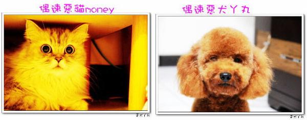money和丫丸的照片.jpg