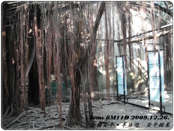 安平樹屋 1F
