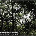 安平樹屋 2F