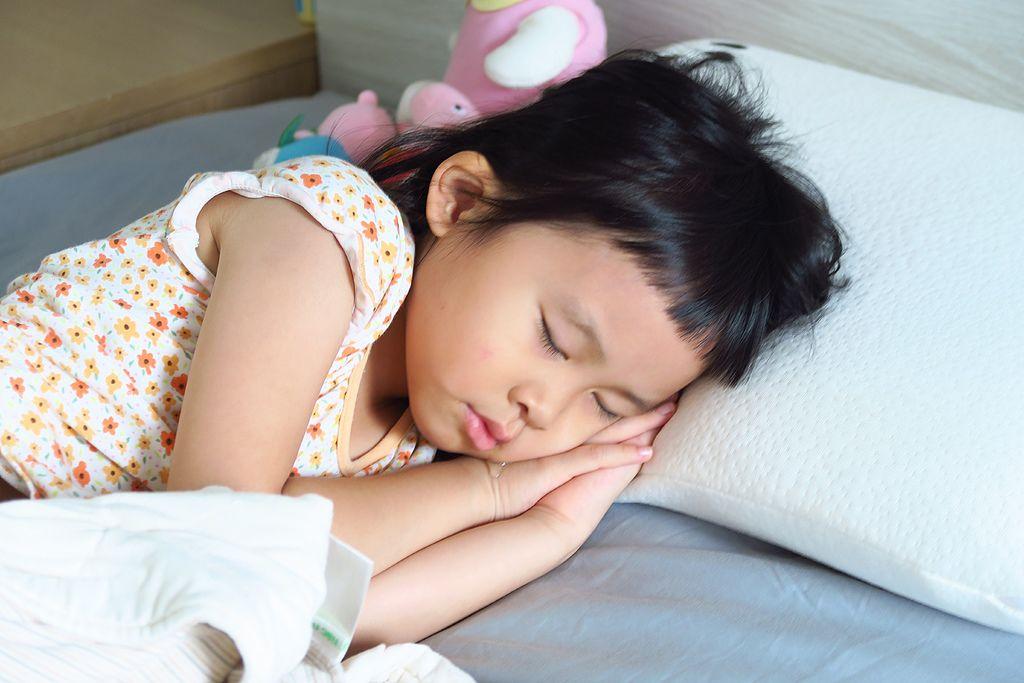 Panda甜夢枕