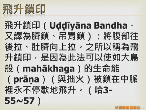 瑜伽教師完整學程探微20151116- (41).png