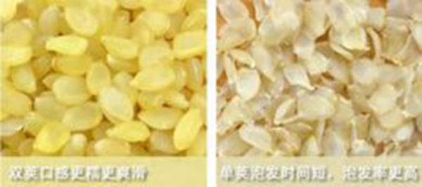 皂角米-2