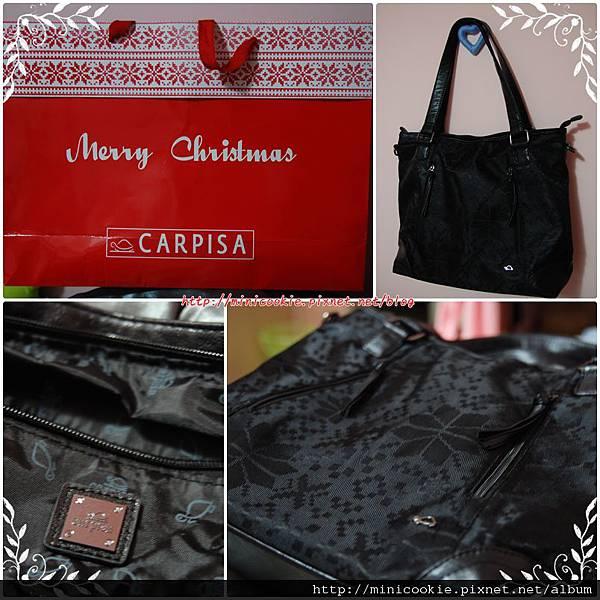 CARPISA.jpg