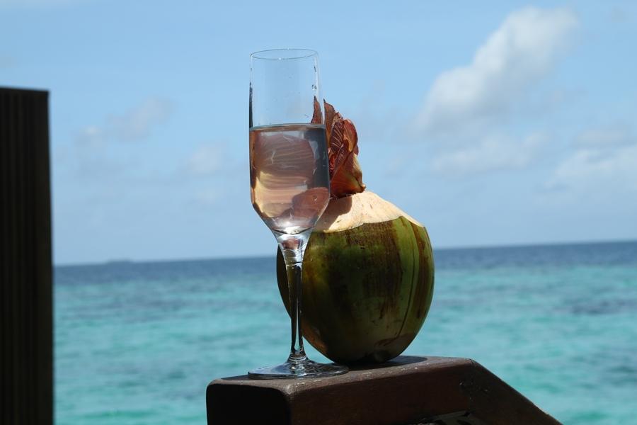 管家給我們的椰子水