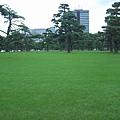 整齊的草坪