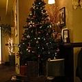Bar裡的聖誕樹