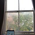 這就是我的窗景