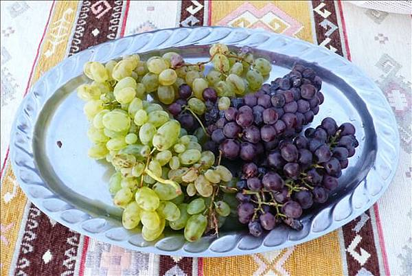 Coco準備了好吃的葡萄