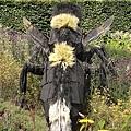 巨大的蜜蜂