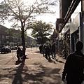 陽光很美的街道