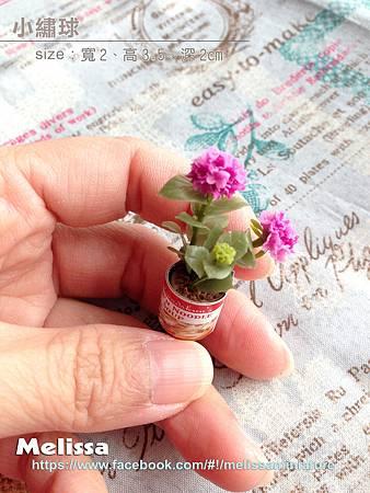 小繡球拷貝fb.jpg