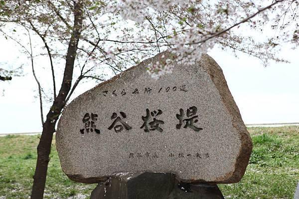 熊谷櫻花-4915.jpg