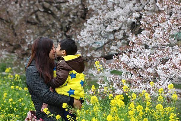 熊谷櫻花-4924.jpg