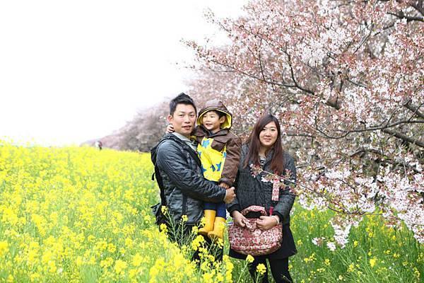 熊谷櫻花-4960.jpg