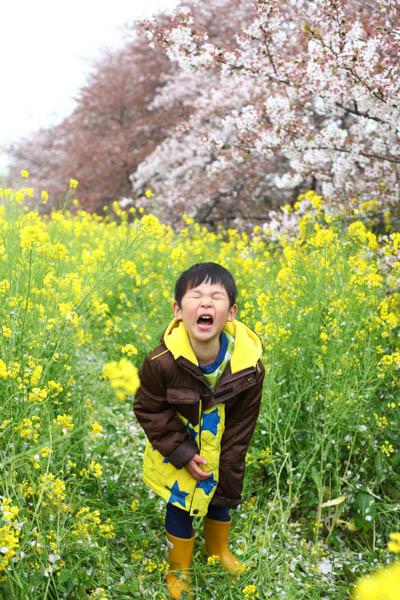 熊谷櫻花-5005.jpg