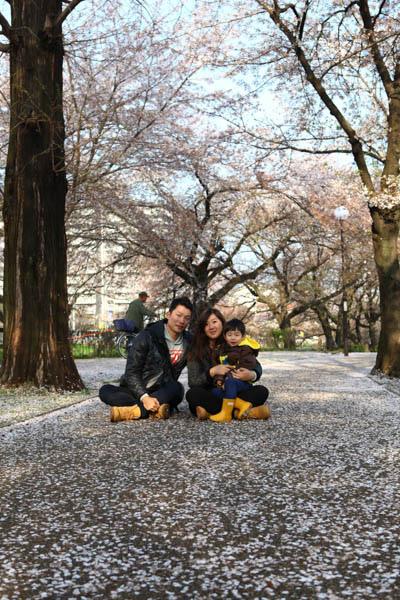 深谷櫻花-11