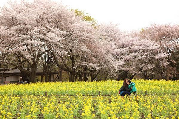 昭和公園賞櫻-112.jpg