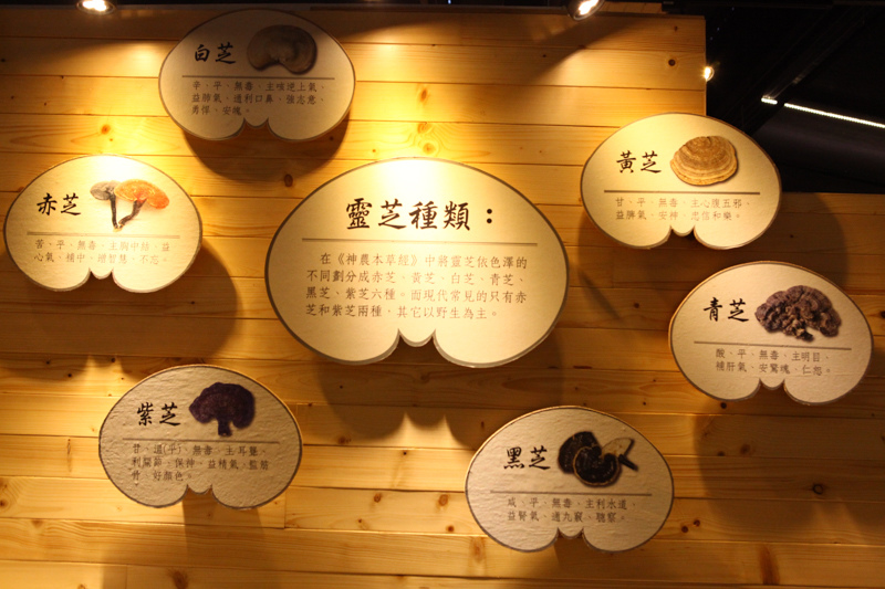 石碇-37.jpg