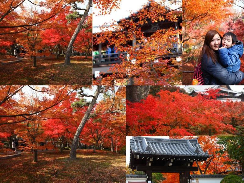 collage東福寺