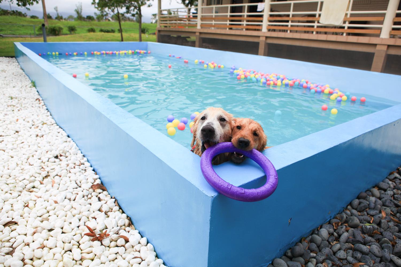 游泳池-19.jpg