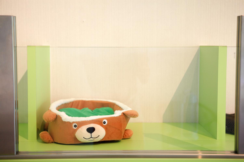 游泳池-42.jpg