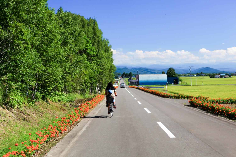 北海道-88.jpg