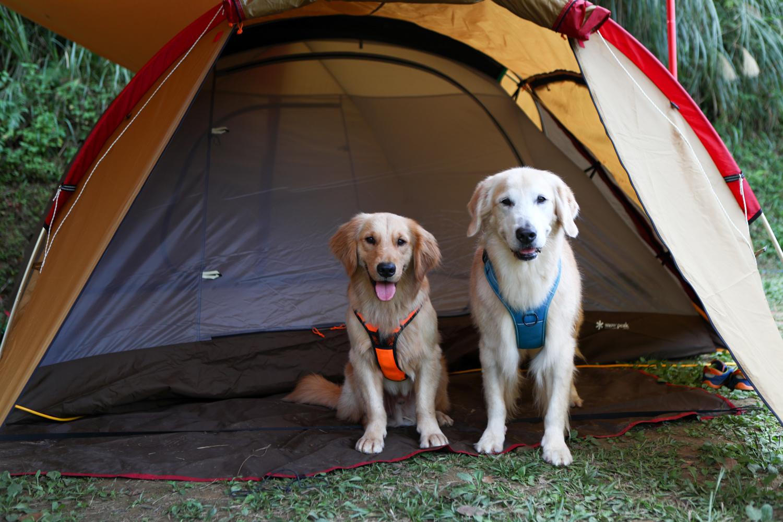 露營-4.jpg