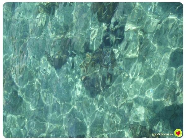 海水就是這麼清澈