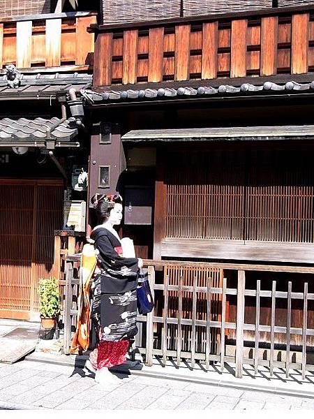 JapanRIMG0465.jpg