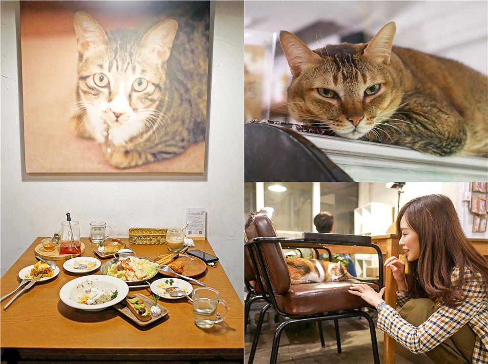 Toast Chat 不限時咖啡廳 美味義式燉飯  貓咪餐廳蒐集|台北東區|捷運國父紀念館 (1).jpg