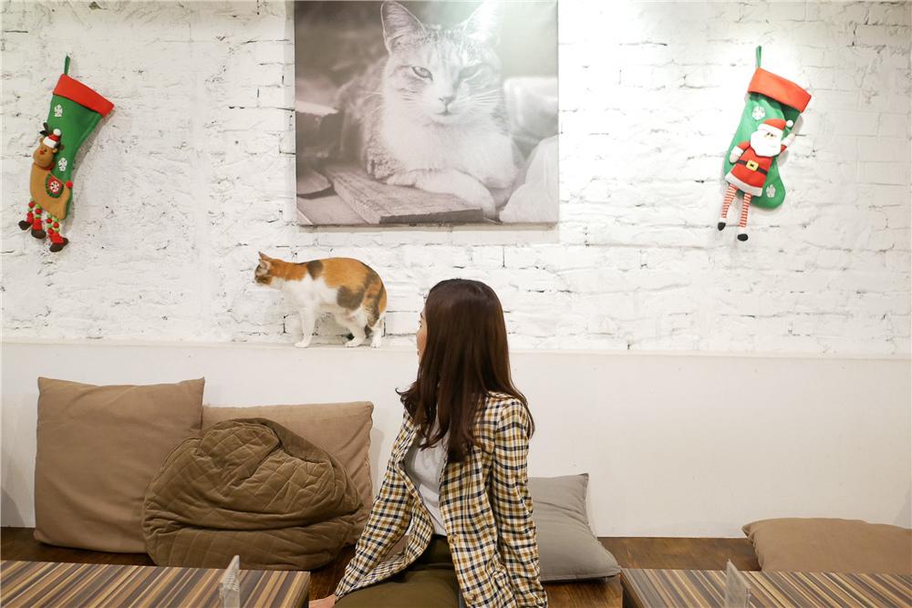 Toast Chat 不限時咖啡廳 美味義式燉飯  貓咪餐廳蒐集|台北東區|捷運國父紀念館 (43).jpg