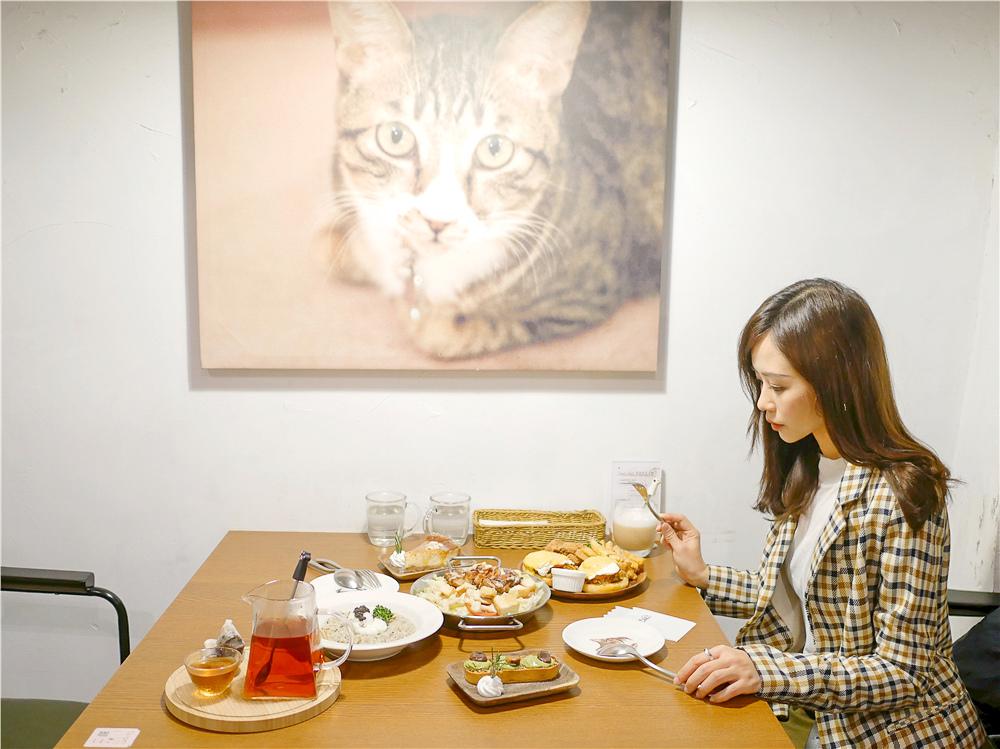 Toast Chat 不限時咖啡廳 美味義式燉飯  貓咪餐廳蒐集|台北東區|捷運國父紀念館 (45).jpg