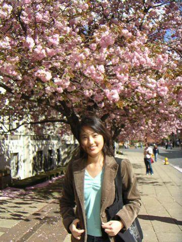 櫻花樹下.jpg