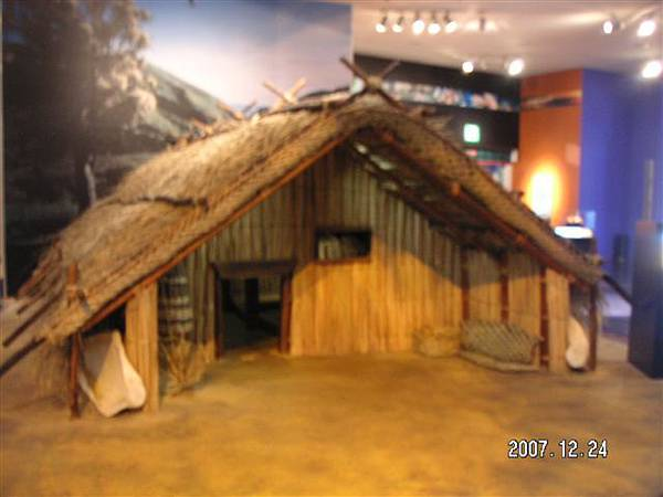 Tepapa 毛利文化