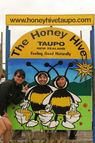 Bee's factory