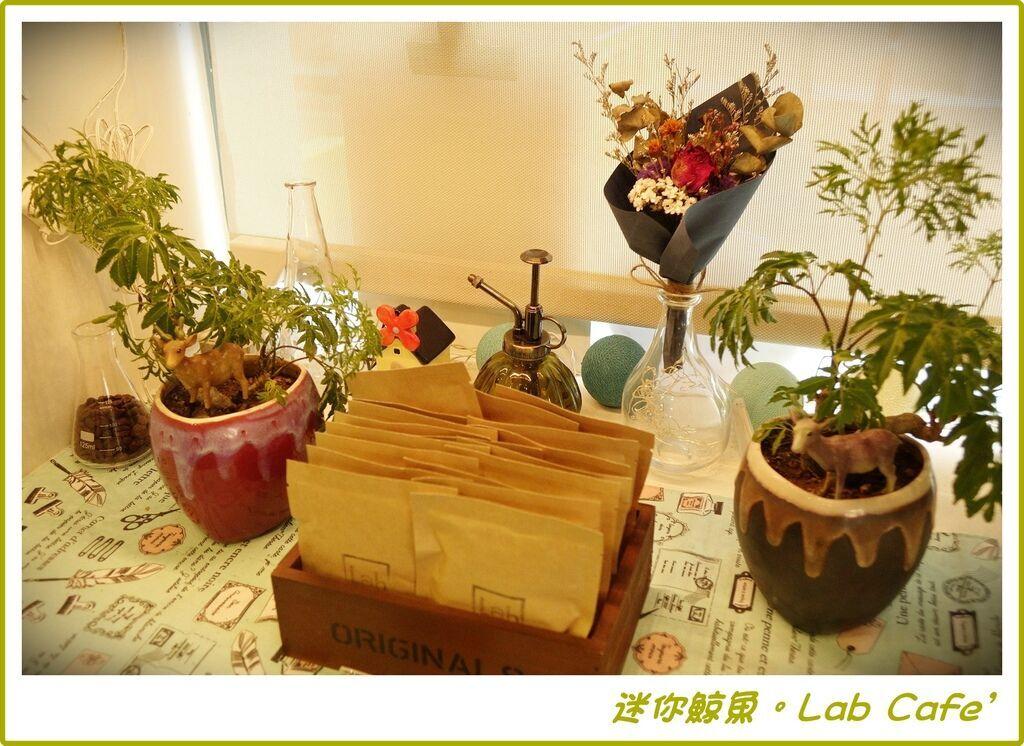 Lab13.JPG