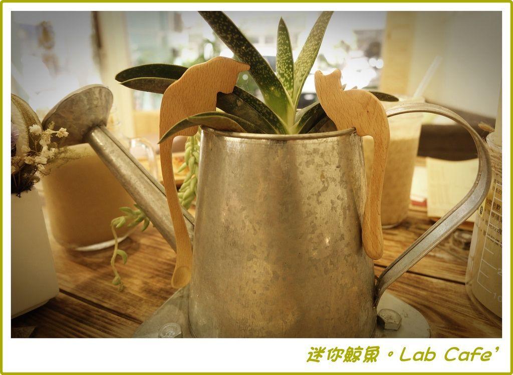 Lab17.JPG