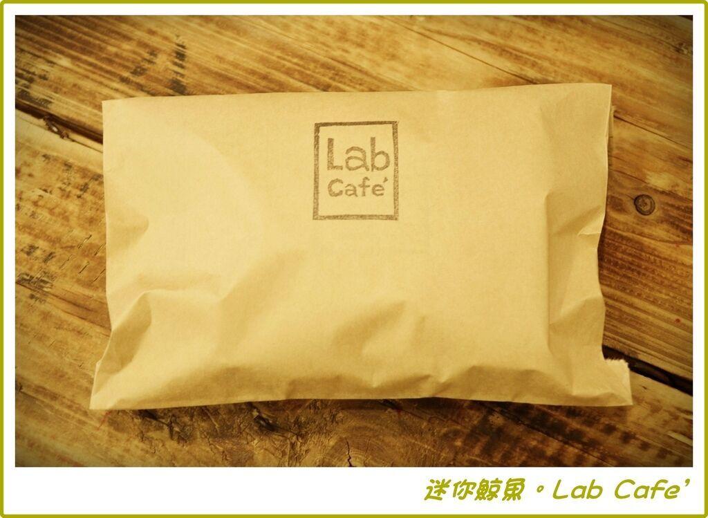 Lab32.JPG